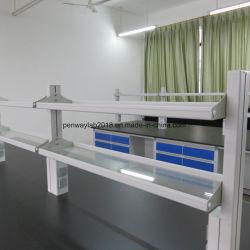 試薬の棚が付いている鋼鉄および木製の実験室の家具