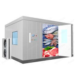 Замороженного мяса говядины из морепродуктов цыпленок шокирующие ходьбы в морозильной камере холодильной