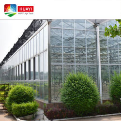 Polycarbonaat PC/Plastic Film/Glass Agricultural Greenhouse Turnkey Project met Quick Construction