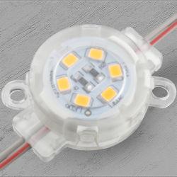 12V 30mm印の照明のための単一Color/RGB LEDピクセルポイントライト