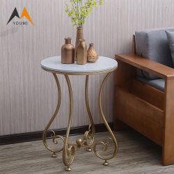 Самый дешевый уникальный гостиной современных металлических современной мебелью в таблице со стороны