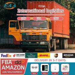 Эссх от двери до двери доставка DHL/TNT/ИБП/FedEx/EMS/Aramex Express из Китая в Индии