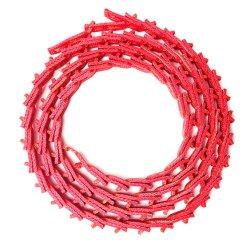 유리제 단단하게 하기 로를 위한 빨간색 Z10 링크 v 벨트