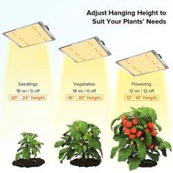 Comercio al por mayor de 600W Premium Full Spectrum Hidroponía de la Bahía de alto par LED Panel Jardín de Luz crecer para interiores de la luz de la Casa Verde de la siembra