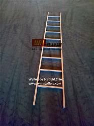 직류 전기를 통한 비계 물자 접근 사각 관 강철 단계 똑바른 사다리