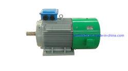 Generatore a magnete permanente brushless a trasmissione diretta da 20 kw 250 giri/min., generatore a turbina a basso regime