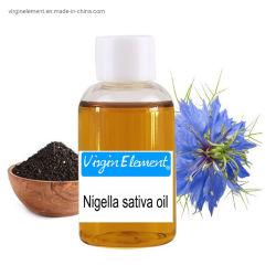 100% naturel Nigella Sativa Extrait Extrait de graines de la poudre noire