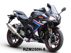 Origineel ontwerp Racing Motor Rzm250h-8 met 150cc-350cc motoren