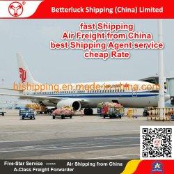 Carga Aérea Carga Marítima rápido da China/Guangzhou/Hong Kong/Shenzhen