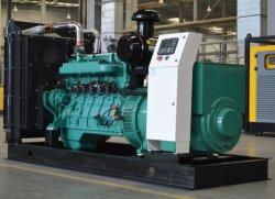 50kw 80kw 100 kw 120 kw générateur de GPL Gaz naturel avec PSC