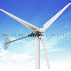 Generatore di turbina a tre fasi del vento del sistema 100W-200kw off-Grid/on-Grid di energia eolica della presa di fabbrica con Ce, iso