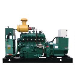 AC Installatie de In drie stadia van het Biogas van het Type van Output om Elektriciteit te produceren