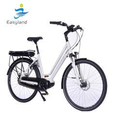 6 Volt-Lithium-Ionenbatterie für elektrisches Fahrrad/modernes e-Stadt-Fahrrad