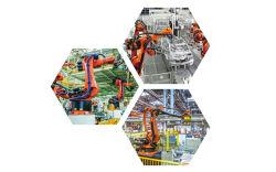 포지셔너가 있는 6축 자동 산업용 로봇 조정자 로봇 암