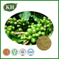 Extracto de granos de café verdes 50% ácidos clorogénicos totales