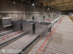 Het de automatische Voeder van de Kweker van de Apparatuur van het Landbouwbedrijf van het Gevogelte van het Vee en Systeem van de Drinker