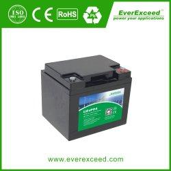 De Reeks UPS van Ldp van Everexceed/Zonne/Verlichting/Telecommunicatie/Medisch/12V Batterij van het Ijzer van het Lithium van de Cyclus LiFePO4 van 100ah de Navulbare Diepe