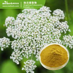 Usine de gros de la médecine traditionnelle chinoise naturelles Radix Angelicae pubescentis extraire