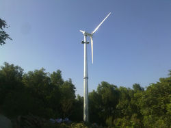 2Квт регулируемого шага электрической мощности ветровой турбины электрический генератор для дома