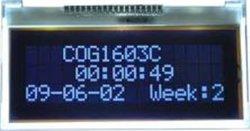 DENTE EX1603C0 del carattere dell'affissione a cristalli liquidi di STN
