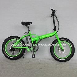 250W de haute qualité 20inch Fat pneus Vélo Pliant Vélo électrique /