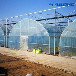 Bajo costo de una sola película de plástico personalizada Span de efecto invernadero para el tomate y pepino o flores y verdura/ la siembra de invernaderos con el sistema de enfriamiento y sistema hidropónico