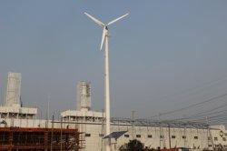 Unité complète Singlephase hors réseau libre Pitch Control 5kw éolienne d'accueil