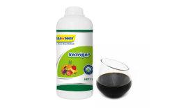 Fertilizzanti solubili in acqua acidi dell'acido umico del fertilizzante di Fulvic dell'alga di Seaha del fertilizzante del fertilizzante liquido liquido organico dell'acido umico