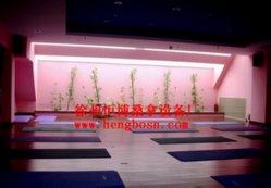 De Zaal van Yoya van Bikram