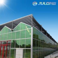 Venlo Typ einlagiges doppelte Schicht-Höhlung-ausgeglichenes Glas-Gewächshaus für das Gartenbau-Blumen-Gemüse-Frucht-Tomate-Pflanzen