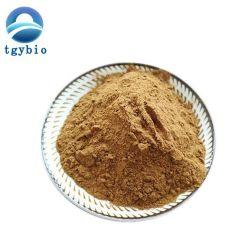 Haute qualité de la poudre de concombre de mer pur extrait