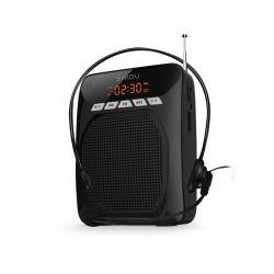 Volume alto Bluetooth Multifunção PA Alto-falante para os Idosos