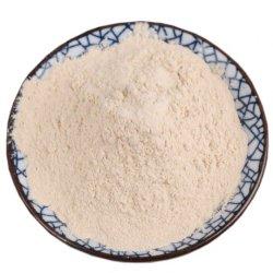 水分を取り除かれた白いタマネギの粉