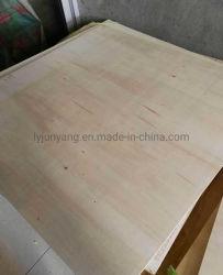 Legno del pioppo di legno di pino Plywood/MDF con Ce