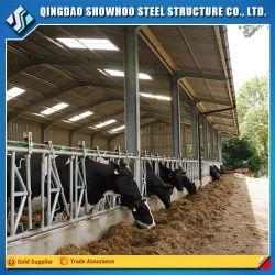Durável e barato o abate de gado House com design de fábrica