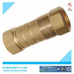 Haute pression tuyau NPT mâle/tube de l'eau en laiton en réduisant le clapet antiretour