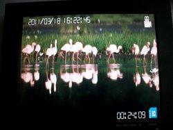 SD 카드 HD 디지털 이미지 저장 단위 DVR8580