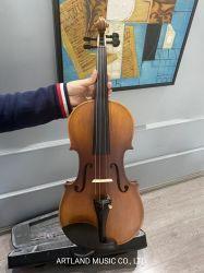 Estudiante al por mayor Contrachapado Violin Outift Cover Bow y Rosin (GV201)