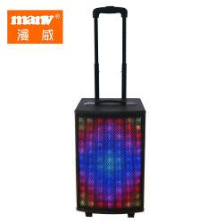 디지털 개인적인 빛 판매 무선 건전지 Bt 스피커에 10 인치 트롤리 스피커