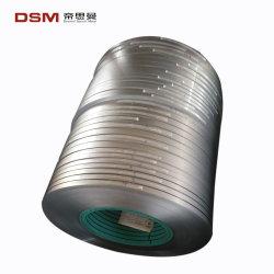 Grote Fabriek op Roestvrij staal AISI430 voor BinnenTank