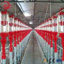 Système d'alimentation de porc de l'équipement d'alimentation du disque système d'alimentation de la chaîne