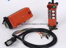 Plataforma elevatória de controle remoto programável, Grua Sem Fio Controle remoto, Controle Remoto do rádio para a grua, Interruptores de fusíveis de controlo remoto
