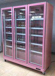 Affichage lumineux à LED de haute qualité d'un réfrigérateur refroidisseur de boissons pour supermarché