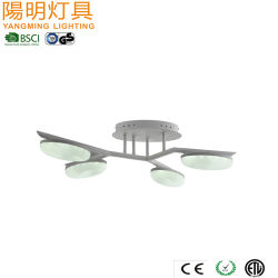 Сталь + акриловый гриб потолочный светильник для детей / светодиодные потолочные лампы