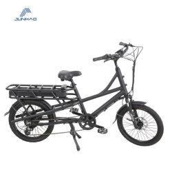 Carga de 20 pulgadas bicicleta eléctrica 48V 350W con ayuda del pedal