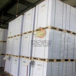 C1S Placa Duplex revestido com Marfim Caixa da placa de dobragem para trás, Placa de marfim, Cast Coated Board
