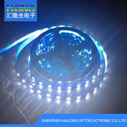 5050 la decorazione di natale dell'indicatore luminoso della decorazione della Camera della striscia 12W/M DC12V di FPC LED illumina alto Brigheness 3 anni di garanzia