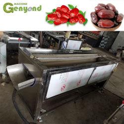 Data de Xangai Palm Calda planta de processamento de frutas