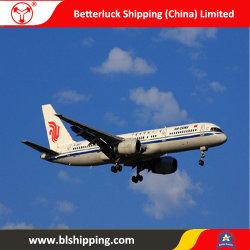 De Logistiek China van de cargadoor aan de Vrachtvervoerder van Chicago