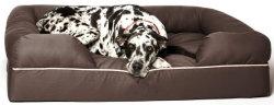 """Petfusion & amovible facile à nettoyer un gros chien lit W/Solid 4 """" matériau mousse mémoire"""